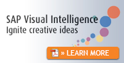 SAP Visual Intelligence