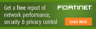 USG Fortnet 1017