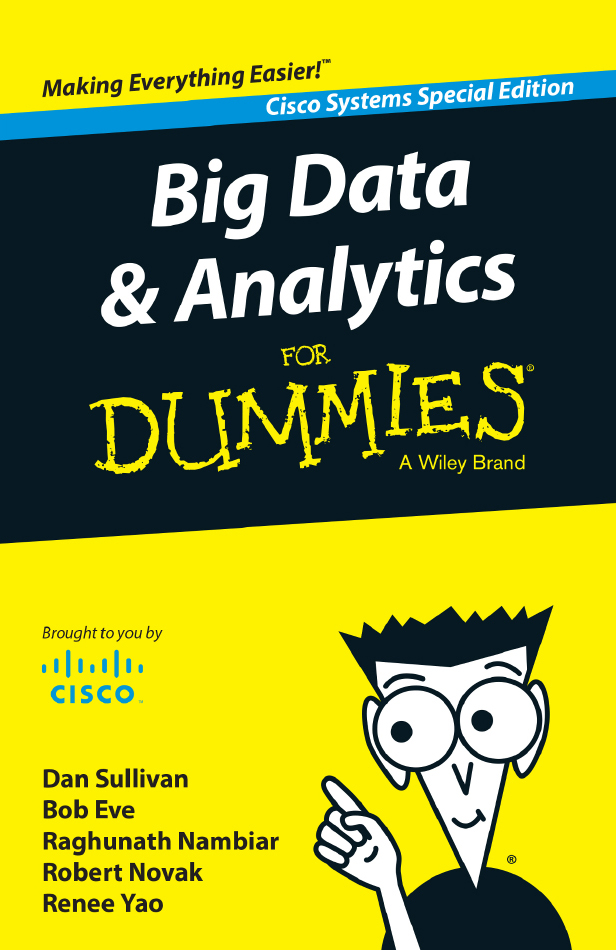 Make the Most of Big Data with Dummies E-Book